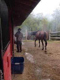 The Healing Barn The Navajo Horse Healing Project Indiegogo