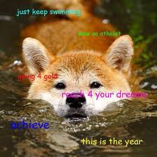 Doge Meme - doge meme reaches for his dreams while going 4 gold