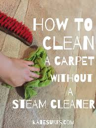 How To Clean The Rug How To Clean A Rug Without A Steam Cleaner Roselawnlutheran