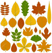 set of tree leaves twenty different icons various elements for