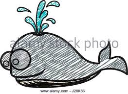 whale cartoon drawing animal vector icon illustration stock vector
