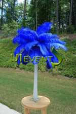 Wedding Feathers Centerpieces by 25 Best Feather Wedding Centerpieces Ideas On Pinterest Diy