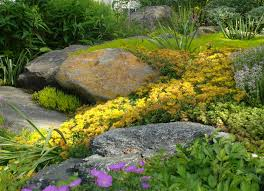 Simple Rock Garden Ideas by Landscape Types Of Landscaping Rocks Intended For House Landscapes
