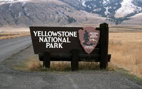 gospel driven disciples yellowstone national park