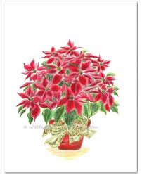 red christmas poinsettia plant watercolor art print wildlife