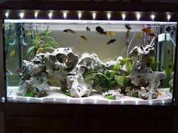 diy aquarium decorations