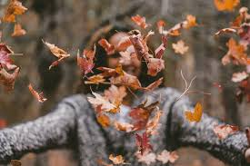 Why Fall Is The Best Season 6 Reasons Why Fall Is The Best Season Her Campus