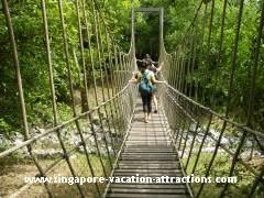 Botanical Gardens Ticket Prices Singapore Botanic Gardens The World Heritage Site