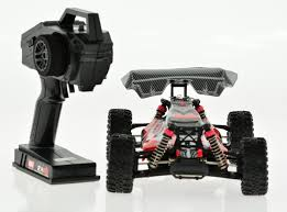 1 16 scale electric 4wd 2 4g rc off road brushed buggy dingo cis