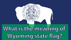 California State Flag Meaning What Is The Meaning Of Wyoming State Flag Youtube