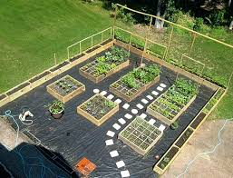 Garden Layout Tool Vegtable Garden Layout How To Plan Your Vegetable Garden Layout