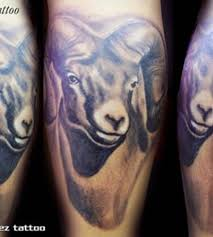 attractive realistic aries goat tattoo design tattooshunt com