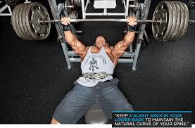 Natural Bench Press Thefugitiveinc Get Seriously Strong In 8 Weeks