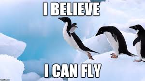 Funny Penguin Memes - image tagged in penguins funny imgflip