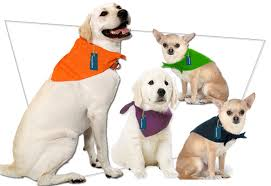 colorful blank bandanas great for embroidery and holidays