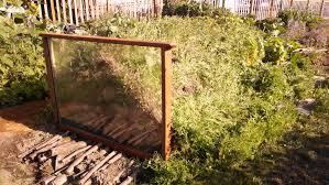 The Summer And Winter Garden - garden round up 2015 port angeles community gardens