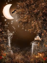 halloween backdrops lookup beforebuying