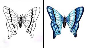 simple butterfly drawing drawing gallery