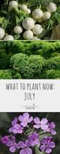 40 best harvest time images on pinterest garden ideas fruits