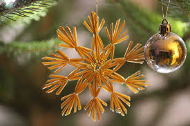 free images tree branch star evergreen religion fir twig