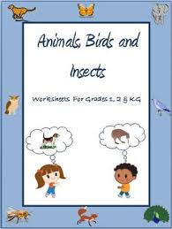 animals birds and insects worksheets for grade 1 2 u0026 kindergarten