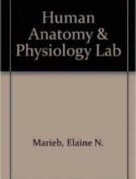 Human Anatomy And Physiology Pdf File Gray U0027s Anatomy Pdf Review And Download Free Free Medical Books