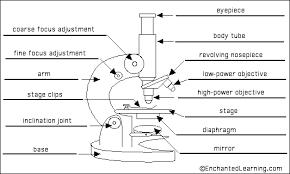 biology 521 resources