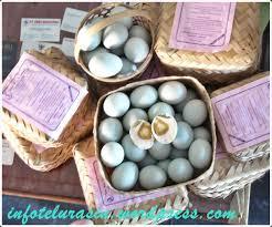membuat telur asin berkualitas telur asin brebes nr jual telur asin kualitas baik pesan telur