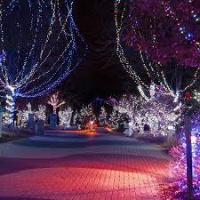 columbus zoo christmas lights check out this season s christmas lights