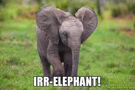 Elephant Meme - irr elephant make a meme