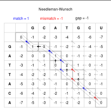 pattern matching algorithm in data structure using c needleman wunsch algorithm wikipedia