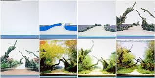 Takashi Amano Aquascaping Techniques Amano Aquasca Sequa