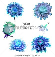blue and purple flowers illustration beautiful pink blue purple flowers stock illustration