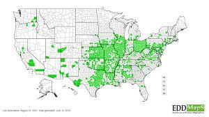 Wray Colorado Map Osage Orange Maclura Pomifera N A Urticales Moraceae