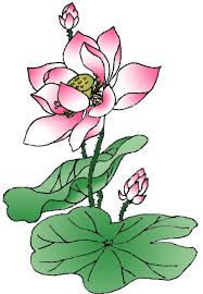 how to draw a lotus for kids step by step flowers for kids for