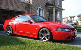 2004 mustang svt 2004 svt cobra for sale in ontario mustang forums at stangnet