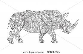 drawing zentangle rhino coloring vector u0026 photo bigstock
