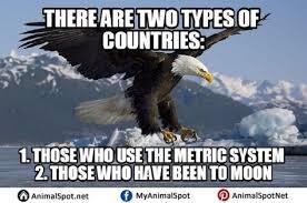 America Eagle Meme - fancy of bald eagle memes wallpaper site wallpaper site
