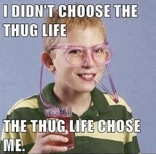 Famous Internet Meme - i didn t choose the thug life the thug life chose me genius
