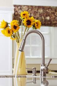kitchen faucets for granite countertops 37 best we kitchen faucets images on kitchen