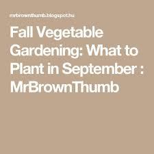 Fall Vegetable Garden Plants by 852 Best Fall Vegetable Garden Images On Pinterest