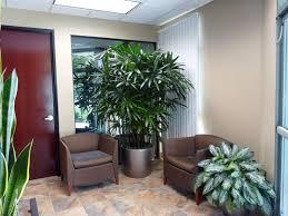 Plants That Don T Need Light Interior Plant Design Photos Plant Professionals Miami Fl
