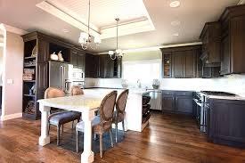changer couleur cuisine cuisine changer les portes de cuisine avec violet couleur
