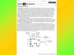 chapter 16 worksheets recombinant dna lab mini labs reinforcement