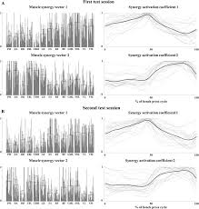 Muscles Used During Bench Press Muscle Synergies During Bench Press Are Reliable Across Days