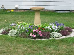 Backyard Ground Cover Ideas by Best 25 Septic Tank Covers Ideas On Pinterest Circle Driveway