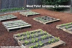 Pallet Gardening Ideas Diy Wood Pallet Garden Spinach Lettuce Celery Strawberries