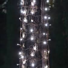 Led Christmas Pathway Lights Outdoor Holiday Lights You U0027ll Love Wayfair