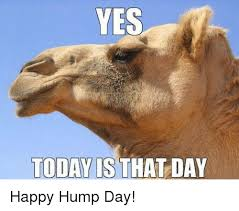 Happy Hump Day Memes - yes today is that day happy hump day hump day meme on sizzle