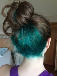 25 best ideas about highlights underneath on pinterest best 25 blue hair underneath ideas on pinterest dyed hair